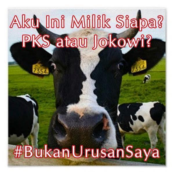 Meme Jokowi, Meme Lucu Jokowi, Meme Bukan Urusan Saya